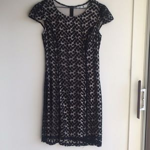 Cato size M black embroidery dress nude lining